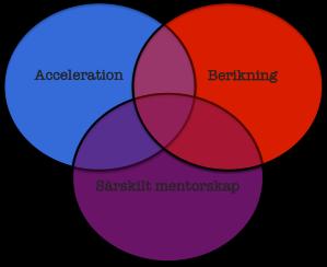 Acceleration, berikning och särskilt mentorskap
